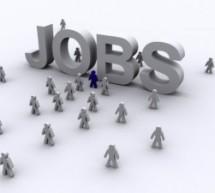 473 locuri de muncă, vacante în județul Sibiu