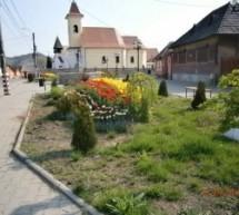 Dezvoltarea turismului şi a parcurilor industriale, proiecte prioritare pentru Valea Târnavelor