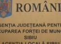 187 de persoane angajate prin intermediul AJOFM Sibiu în luna ianuarie