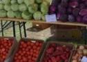 Piața Transilvania din Sibiu, în curs de reorganizare