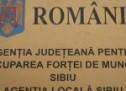 AJOFM Sibiu organizează Bursa locurilor de muncă pentru absolvenți (vineri, ora 9)