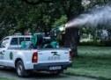 Acțiune de dezinsecție împotriva țânțarilor în municipiul Sibiu (30-31 mai)