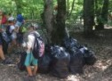 Acțiuni de ecologizare în Cisnădie şi Cisnădioara