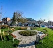 Plantări de arbori și arbuști în Sibiu