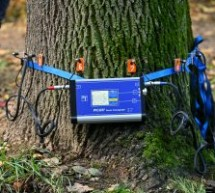 Tomograf pentru arbori în dotarea Primăriei Sibiu