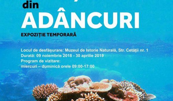 """Muzeul de Istorie Naturală Sibiu organizează expoziția """"Orașul din adâncuri"""""""